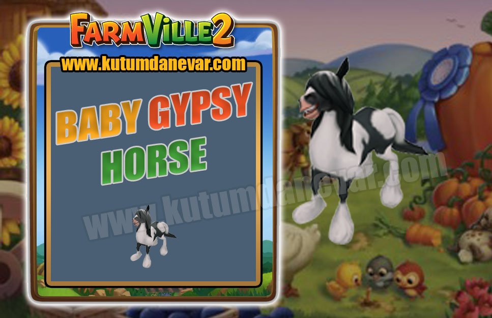 Farmville 2 free baby gypsy horse gifts for the 1st time in 21 January 2020 Tuesday